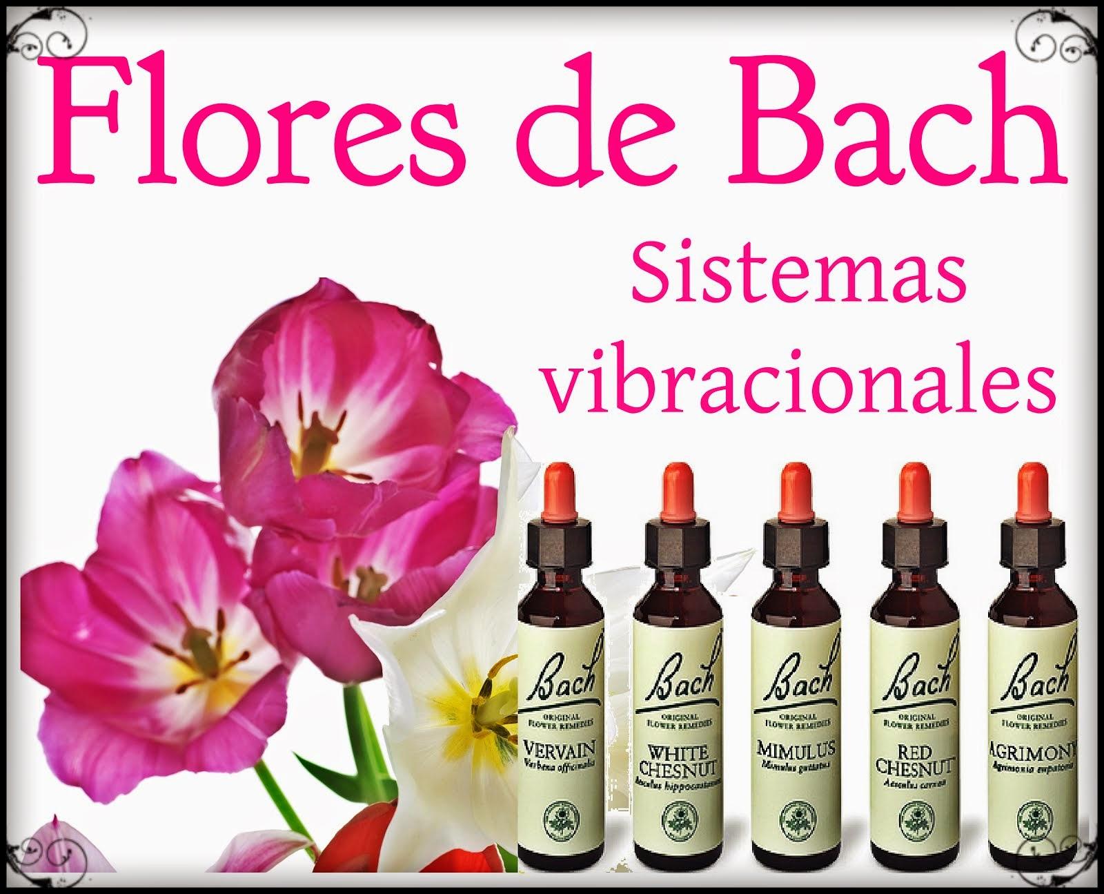 Cursos Flores de Bach